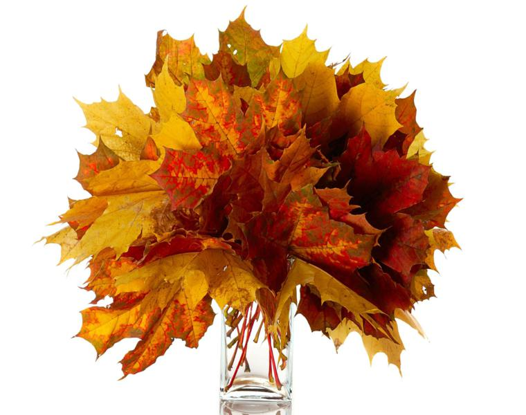 Pias y hojas secas decora tu mesa para recibir el otoo