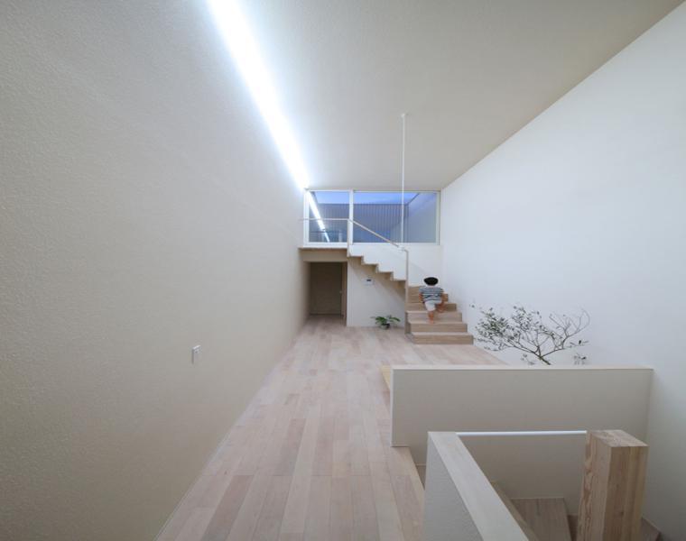 pasillo estilo minimalista suelo madera