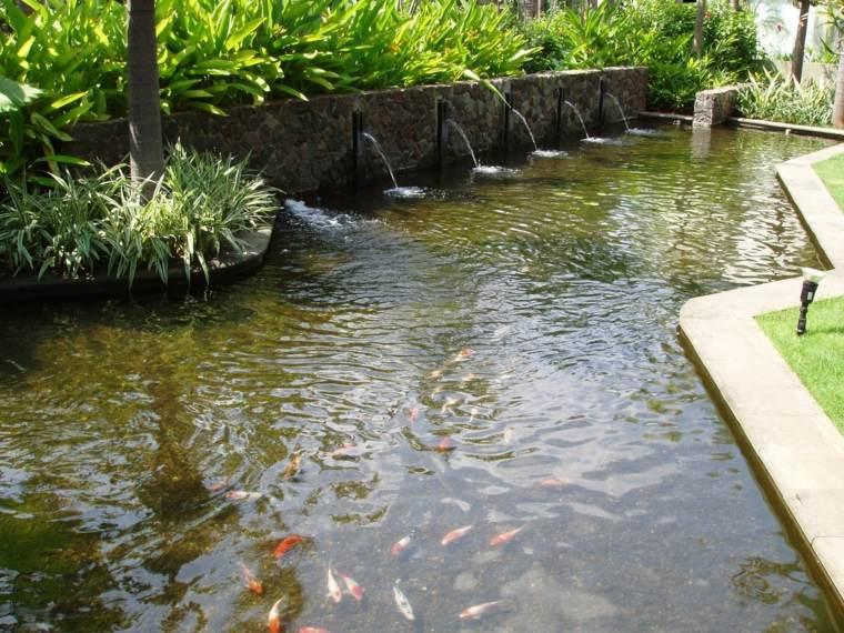 Peces de agua dulce koi para criar en el jard n moderno for Como criar peces koi