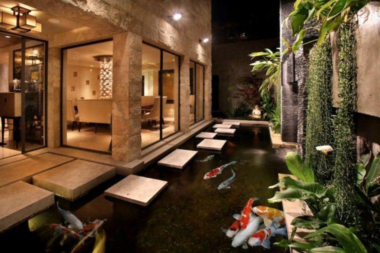 peces de agua dulce kio jardin contemporaneo ideas