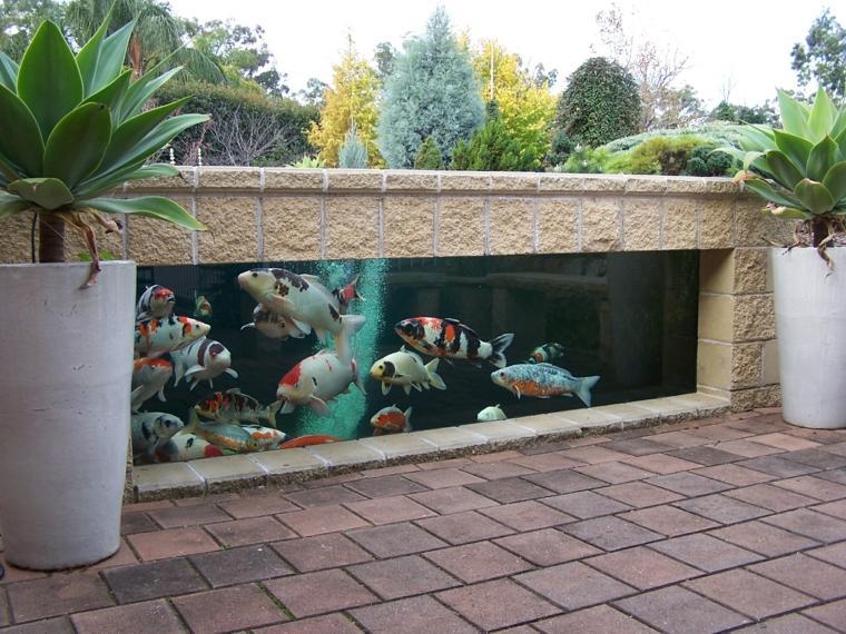 Peces de agua dulce koi para criar en el jard n moderno for Como oxigenar el agua de un estanque para peces