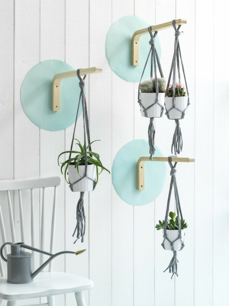 plantas colgantes ideas interior