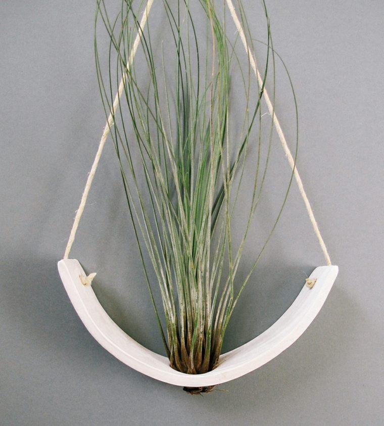 Plantas colgantes ideas para el interior - Plantas de interior para salon ...