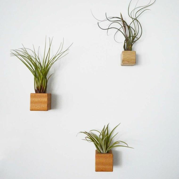 Plantas colgantes ideas para el interior - Macetas en la pared ...