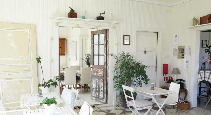 plantas de interior foto interior blanco moderno ideas