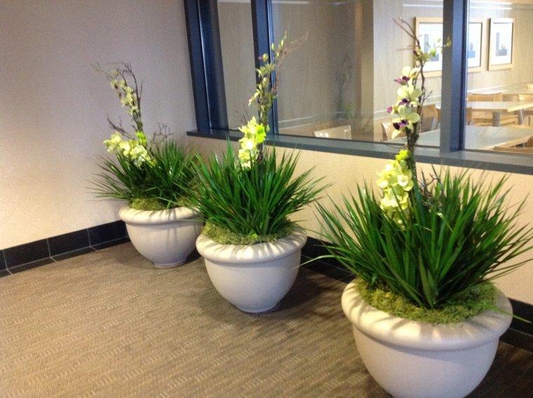 Decorar con plantas de interior la casa - Macetas para plantas de interior ...