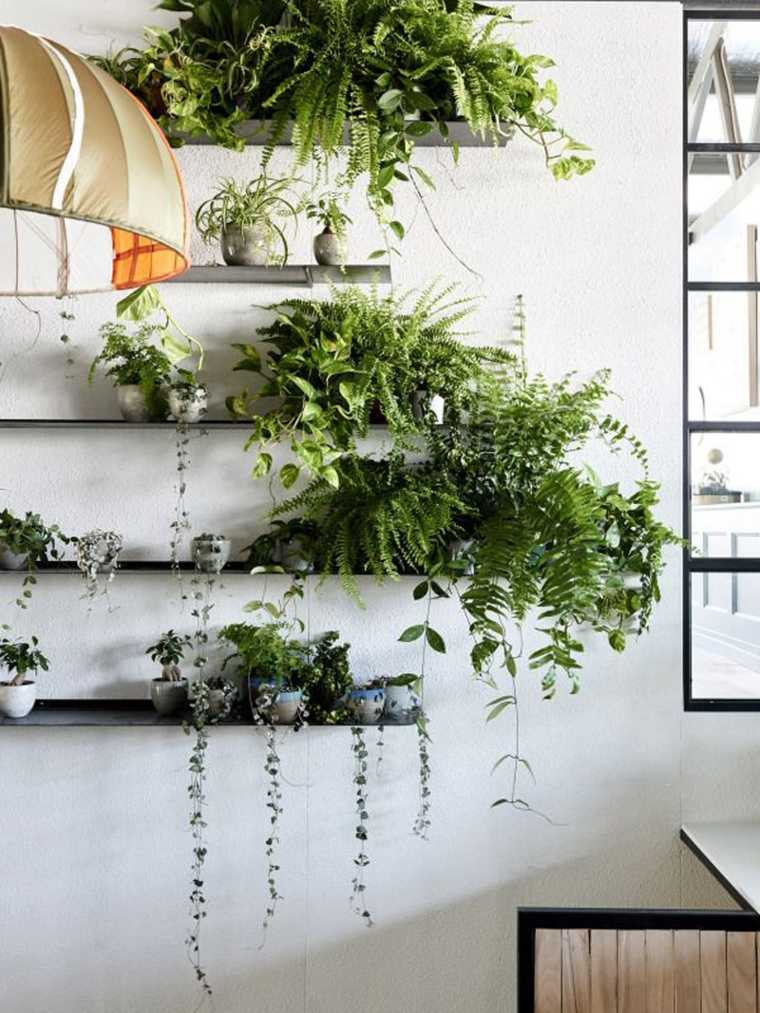 Decorar con plantas de interior la casa for Estanteria jardin plantas