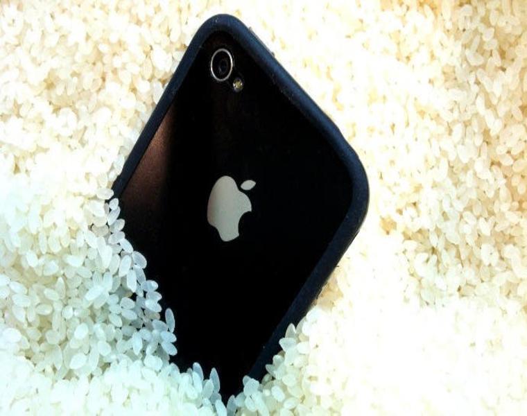 secar telefono mojado arroz sal