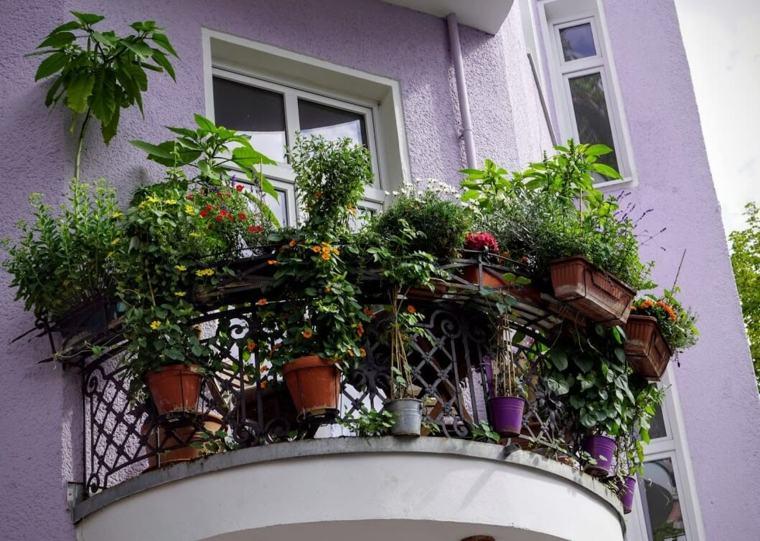 terrazas con plantas fuera