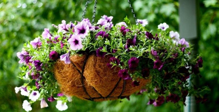 terrazas decoradas con plantas colgantes