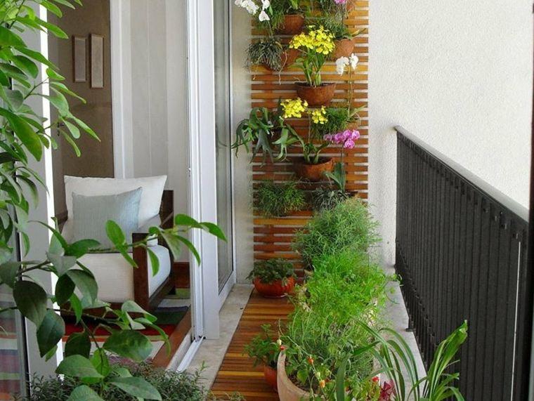 terrazas decoradas con plantas pared