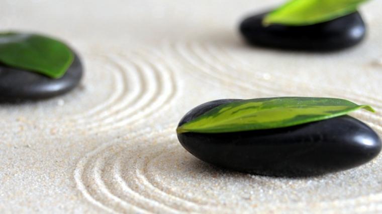 zen jardines elementos