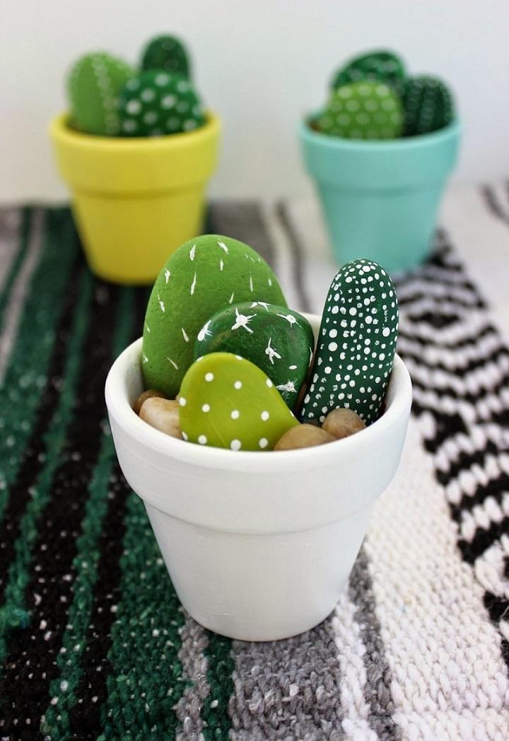 cactus plantas colores materiales blanco