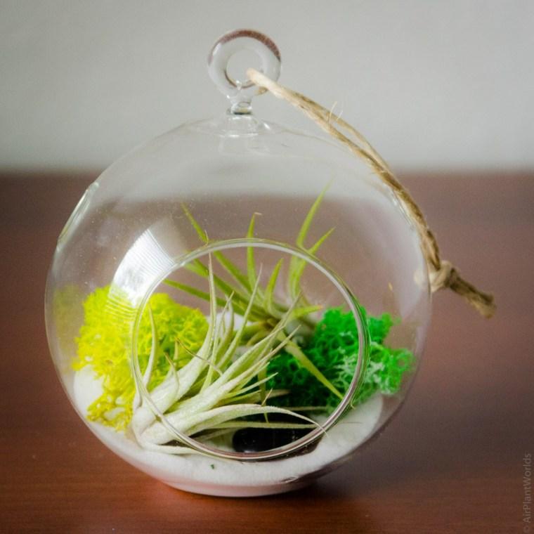 estupenda decoracion bola colgante