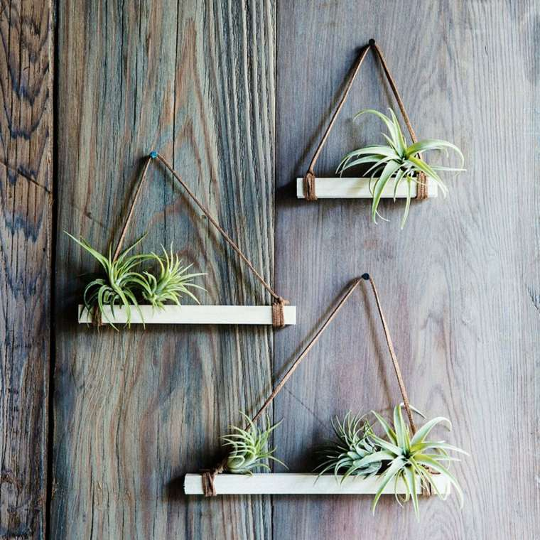 Plantas de aire tipos e ideas de decoraci n Plantas limpiadoras de aire