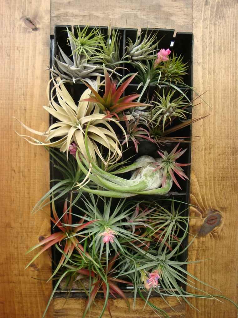 jardin vertical planta aire