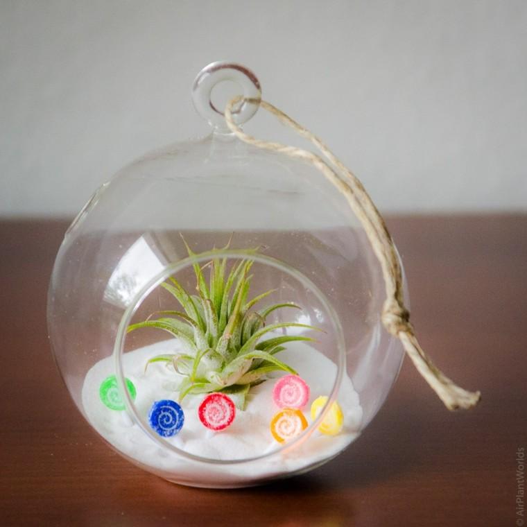 original bola vidrio planta