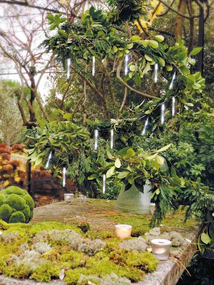 plantas jardines decoracion salas ramas