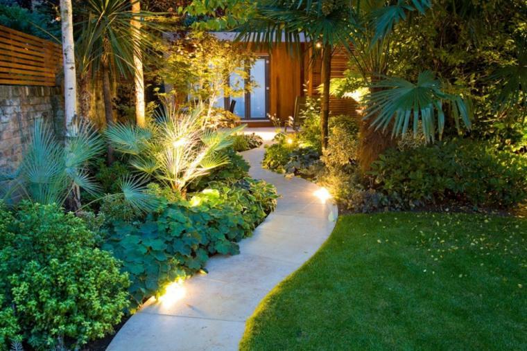 sendero jardin diseno tropical plantas ideas