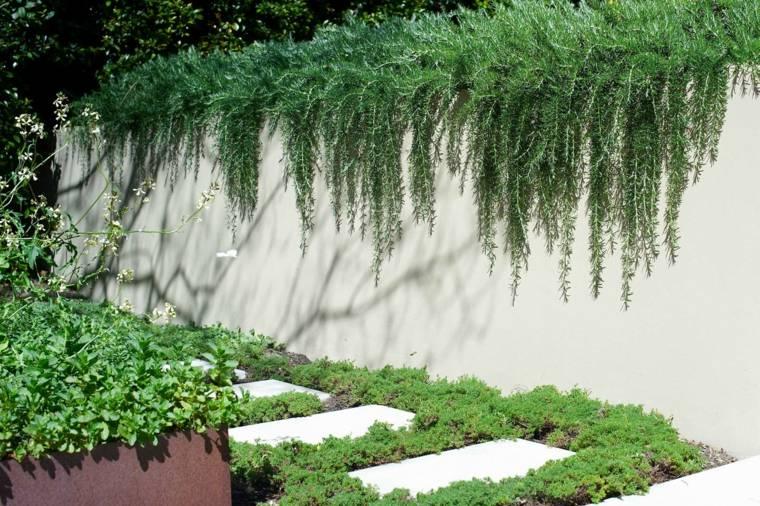 sendero jardin losas rodeadas moho ideas