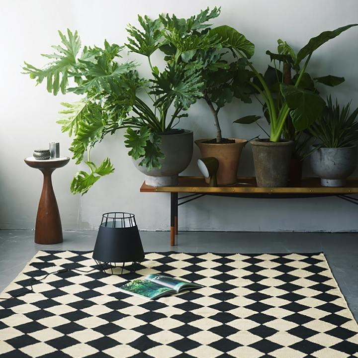 alfombras casas muebles negro cuadros