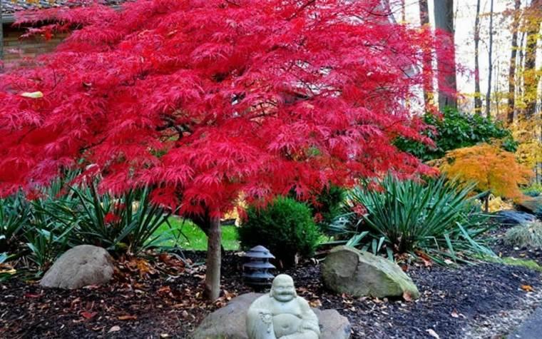 Rboles de jard n para colorear el exterior for Arboles para jardin japones