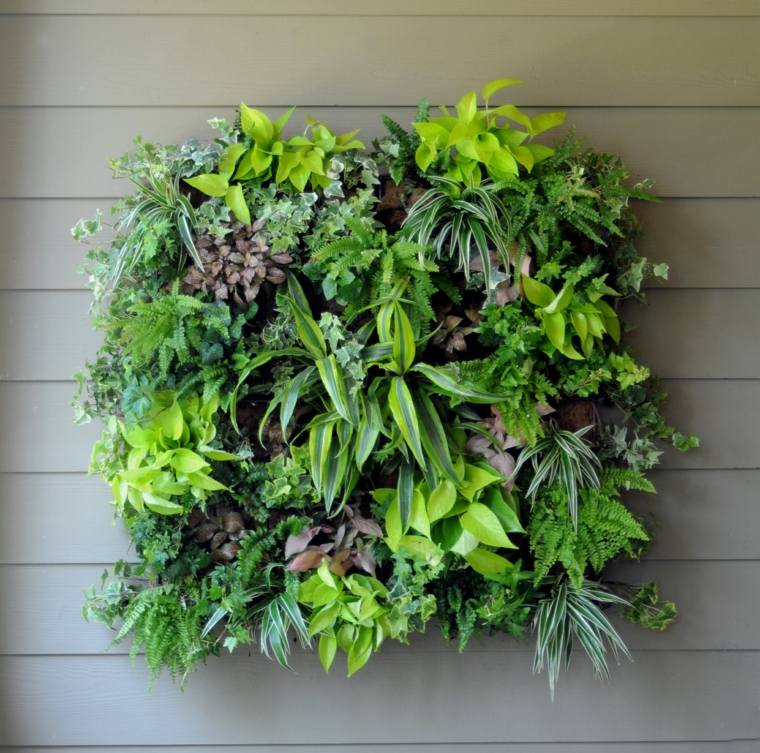 bonito diseo jardin vertical pared