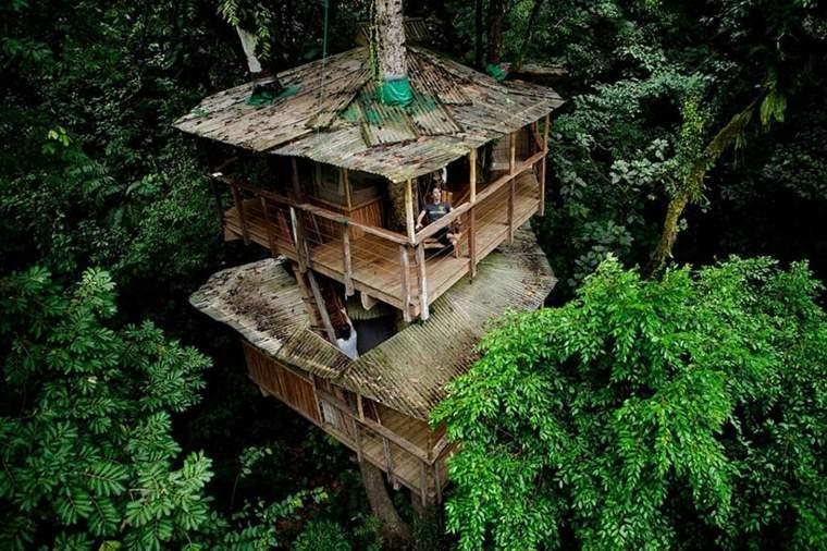 casa en los árboles bosque