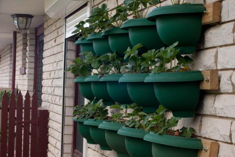 colocar estantes macetas plantas pared