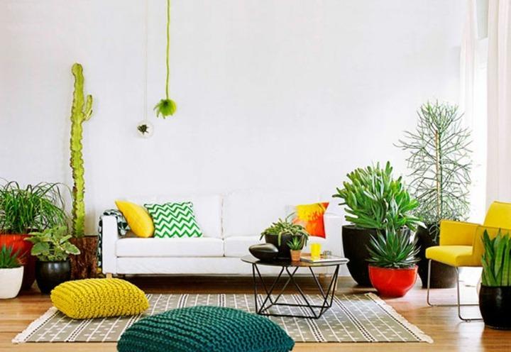 divertidos ambientes coloridos efectos sillones