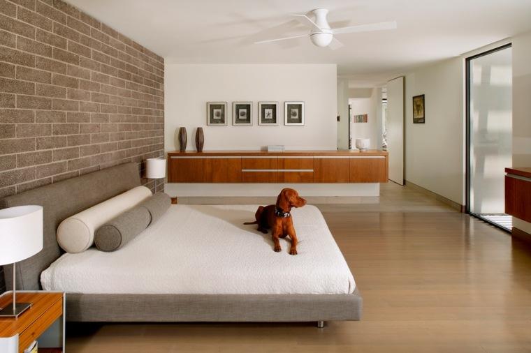 elegantes habitaciones frescas perro muestras