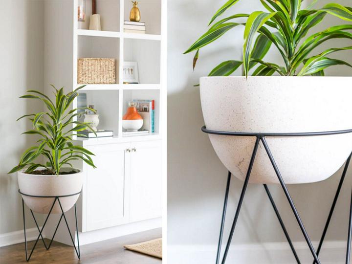 estantes decoraciones complejas muebles fijos