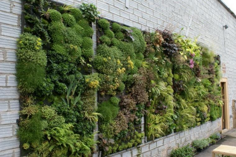 estupedna fachada decorada jardin vertical