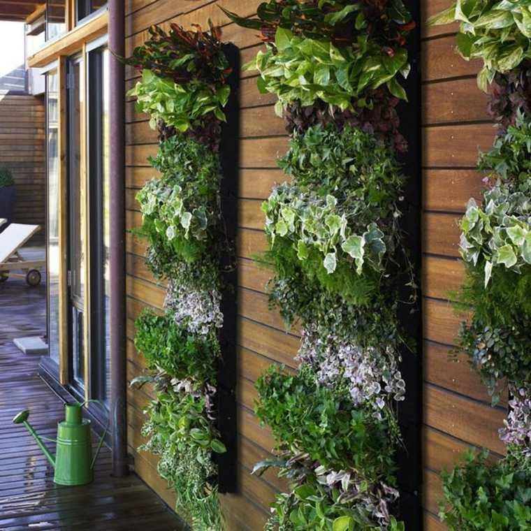 jardin pared madera plantas