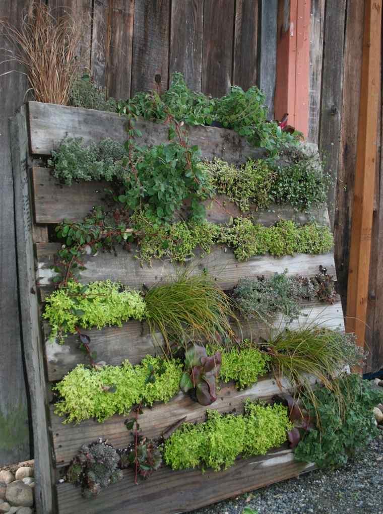 jardin vertical palet madera plantas