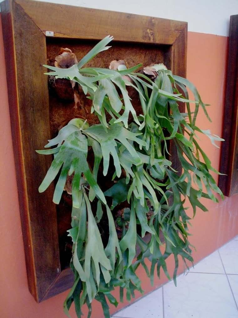 Como hacer un jardin vertical en casa o en el patio -