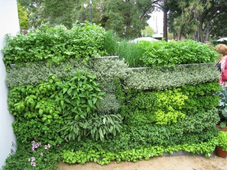 Como hacer un jardin vertical en casa o en el patio for Plantas de jardin exterior