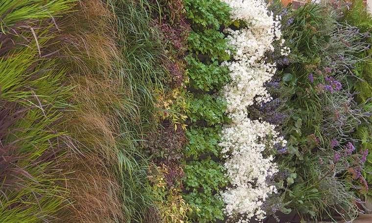 originales disenos jardines verticales