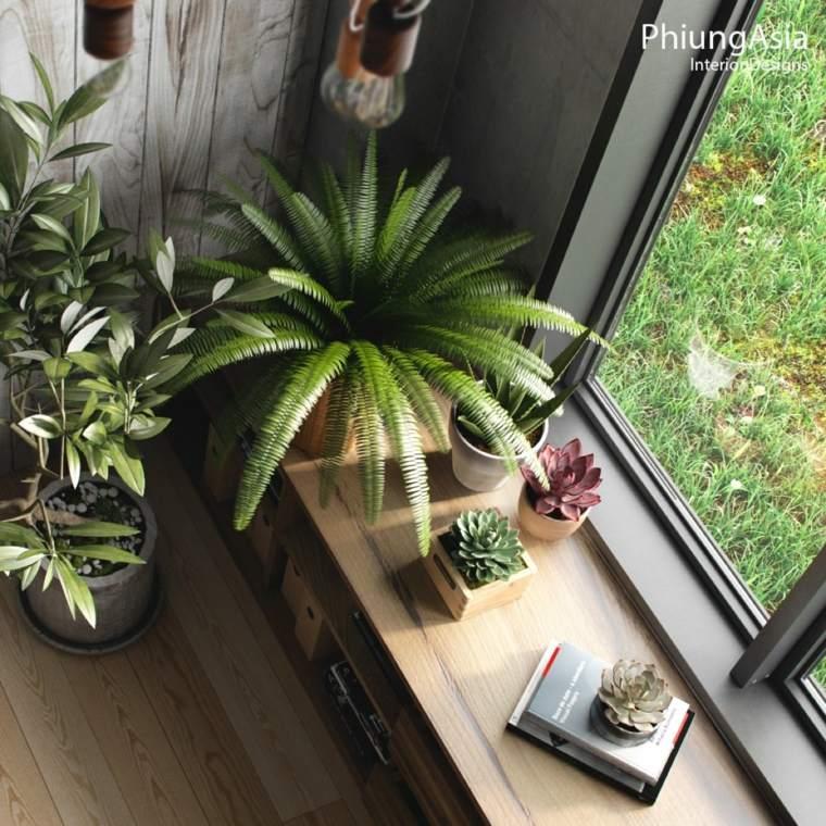 plantas macetas verde espacios suculentas