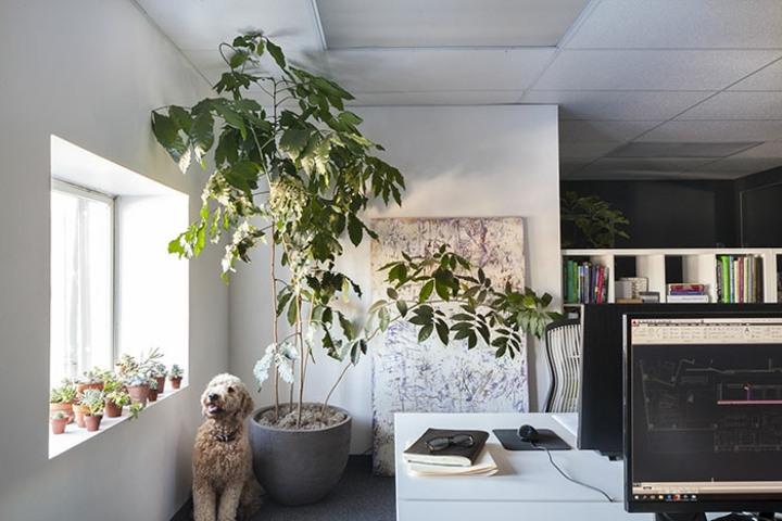 soluciones oficinas colores estilos grises