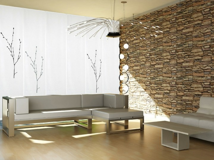 bello minimalista espacio salones ramas
