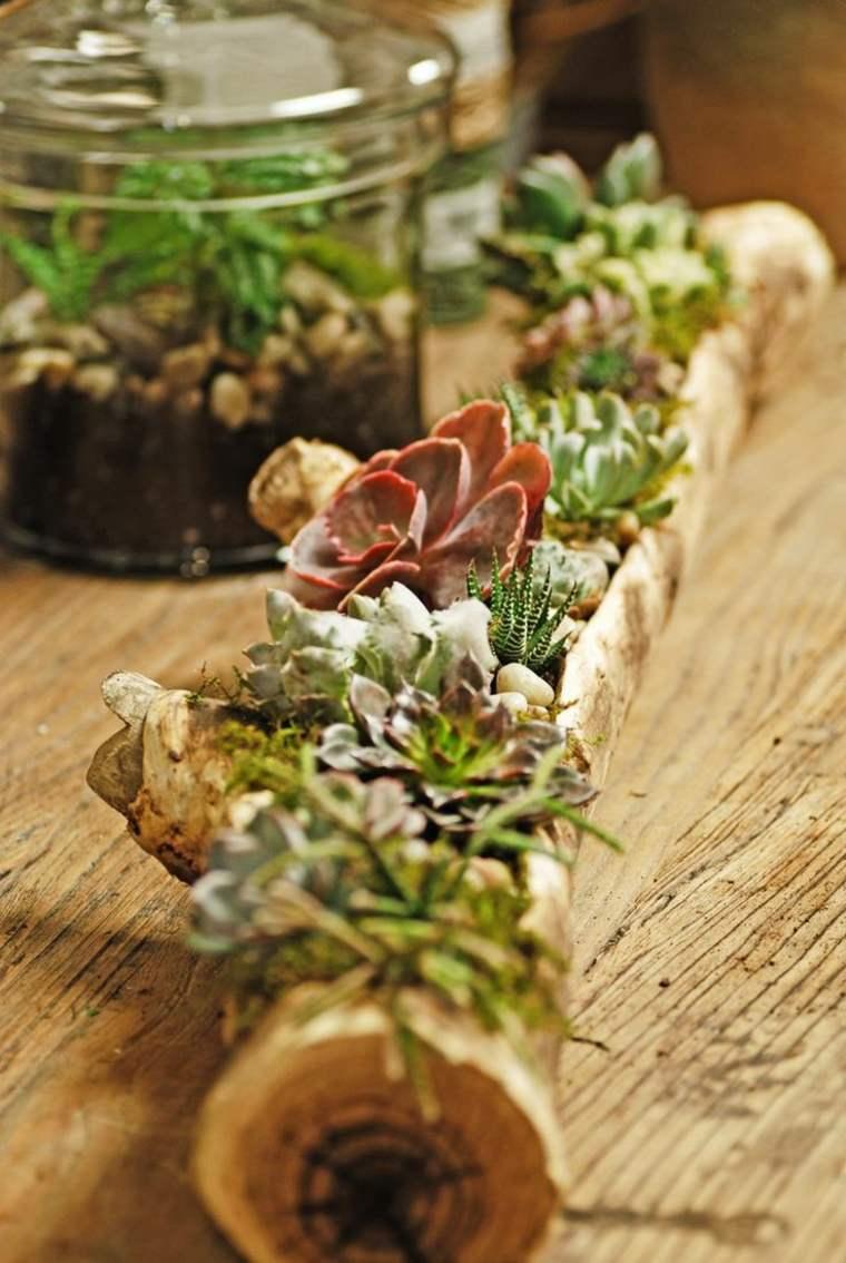 bonito centro mesa tronco plantas