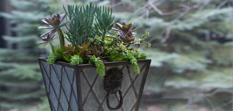 bonito diseño macetero plantas