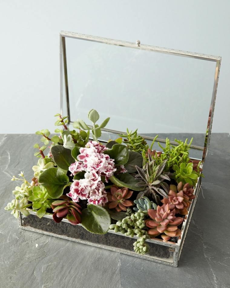 caja maletin plantas deco naturales
