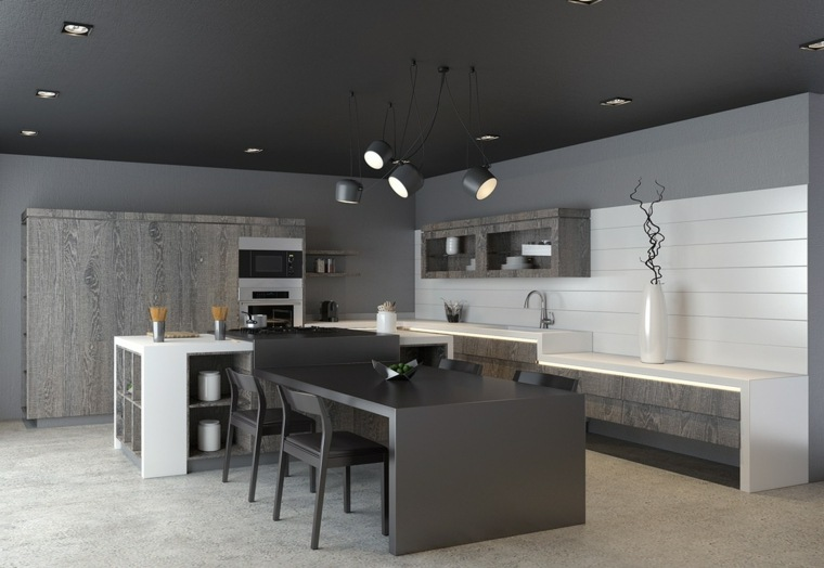 color negro cocinas ideas modernas grises