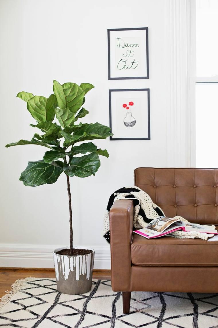 decoración de interiores tendencias 2017 plantas hojas grandes diseno moderno ideas