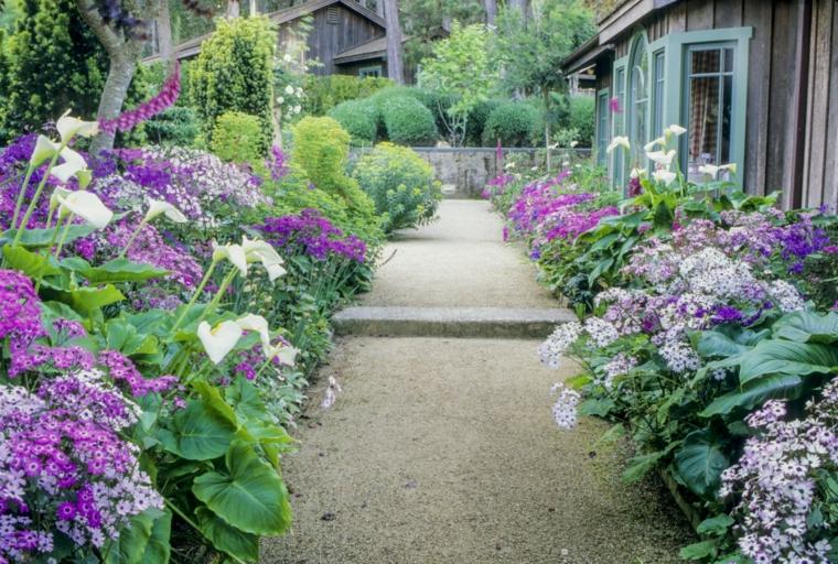 estupendo camino jardin flores violeta