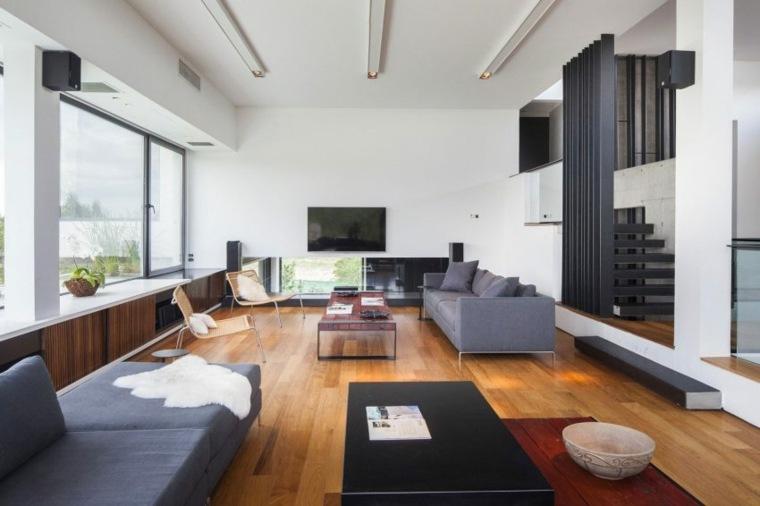 fotos-dsalones modernos casa rampa argentina andres remy arquitectos ideas