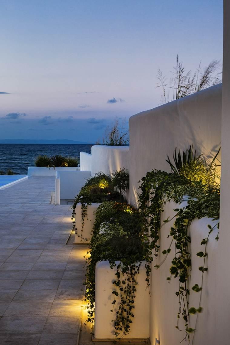 hotel boutique plantas colgantes bordes