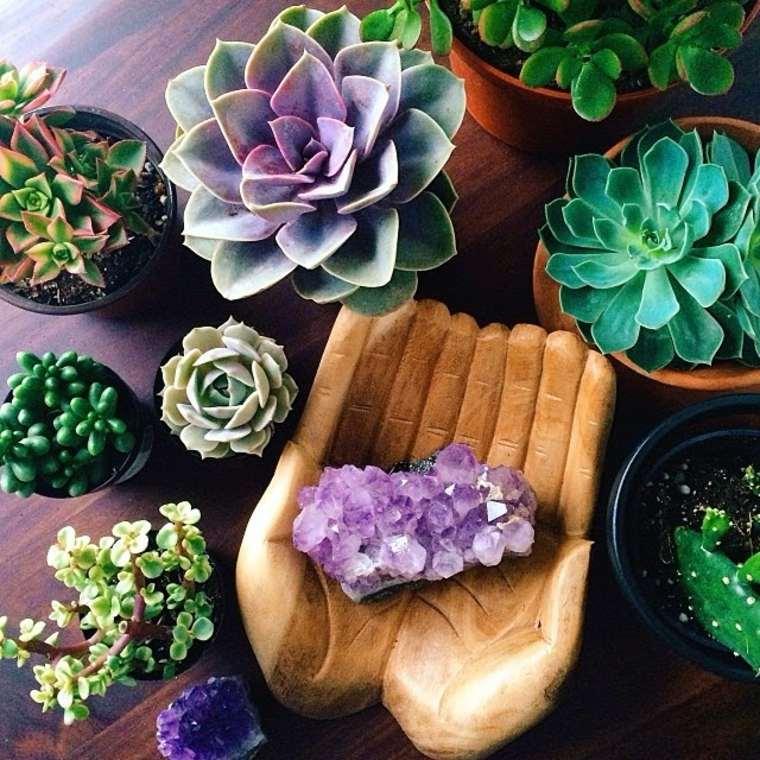 original decoración plantas colores